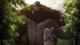 El Titán Bestia observa a Mike