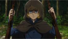 Armin confisca rifles