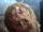 Titán Saltarín