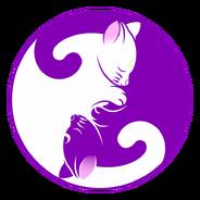 Cat-1539610 960 720