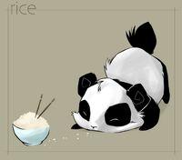 Anime-panda