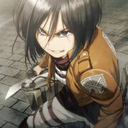 Mikasa Cruel World