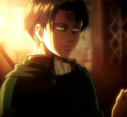 File:Levi returning from the expedition.png