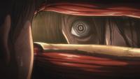 Mikasa's glare
