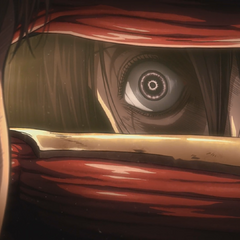 La ira de Mikasa reflejada en sus ojos.