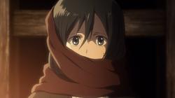 Mikasa Schal