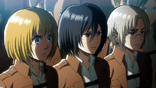 Armin and Rico comment the behavior of wall supporters