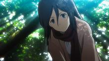 Mikasa wakes Eren up