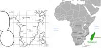 Paradis comparé à des continents réels
