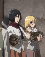 Mikasa coupe du bois Anime
