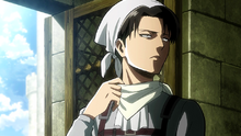 Levi the cleaner