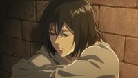 Mikasa refuses to believe the curse