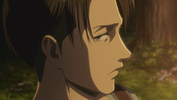 Levi apologizes to Hange