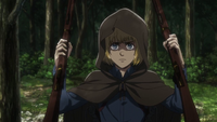 Armin confiscates rifles
