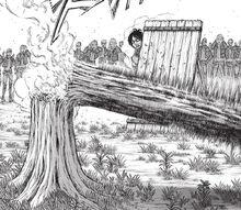 Breaking tree