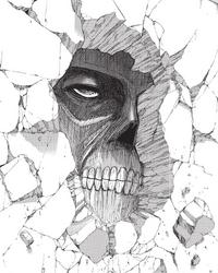 Wall titan face