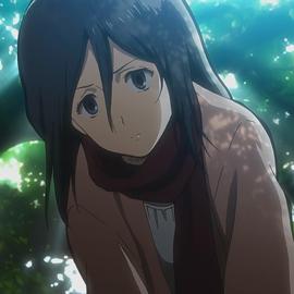 Mikasa Ackermann (Anime) character image (845)