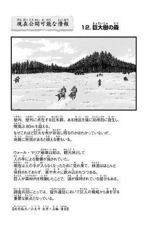 File:CPAI12.jpg