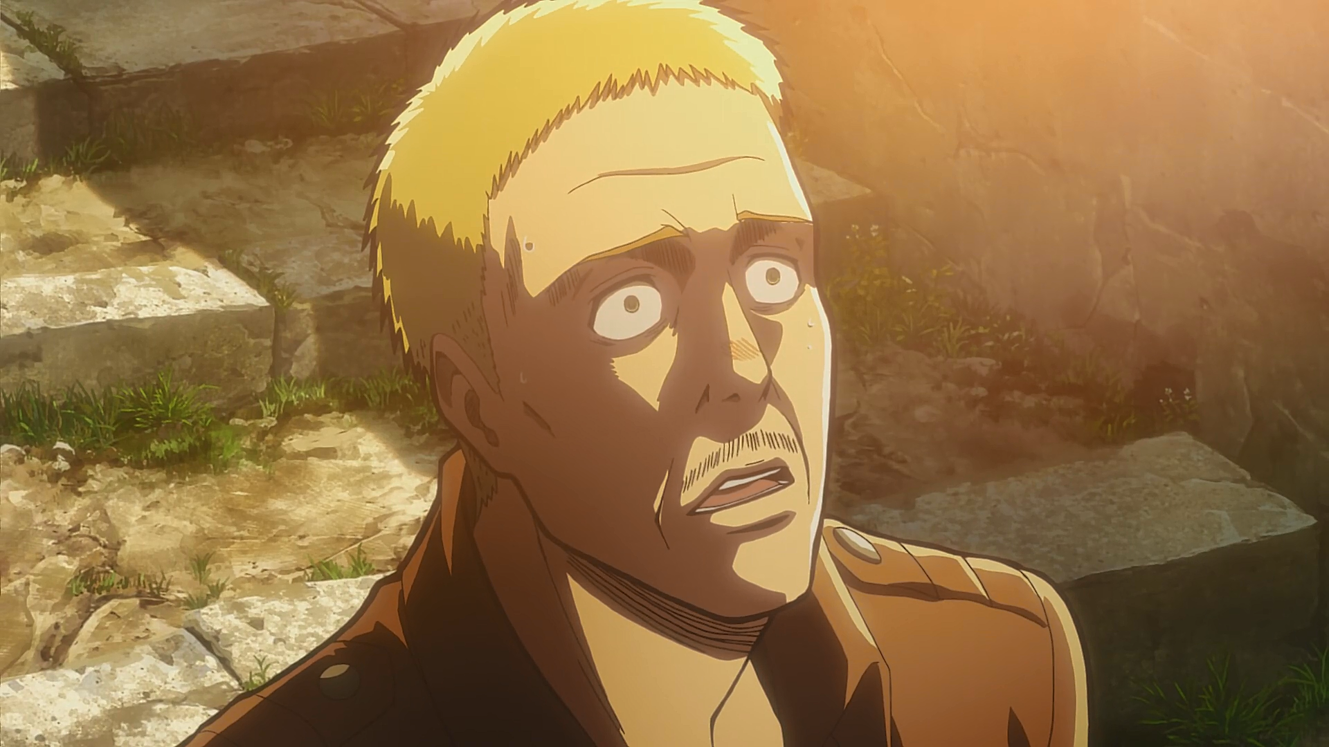 Hannes Anime Attack On Titan Wiki Fandom