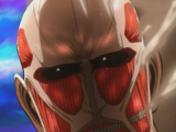 Colossal Titan (Junior High Anime)