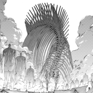 Titan Originel (M)