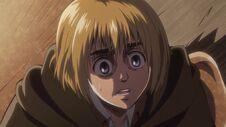 Le plan d'Armin