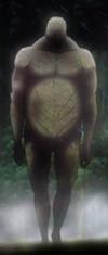Titans de 15 mètres