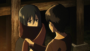 Mikasa écharpe d'Eren