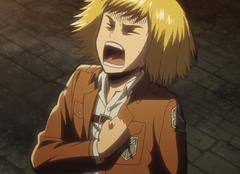 La dichiarazione di Armin