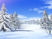 Bg snowfield day