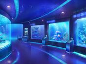 Bg aquarium