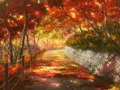 Bg forestpath fall