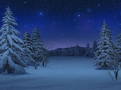 Bg snowfield night