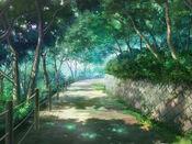 Bg forestpath