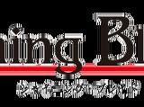 Shining Blade (Game)