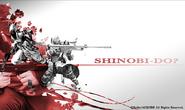 Shinobidosolid