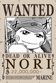 NoriWanted