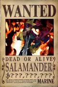 Salamander's Wanted Poster