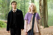 Category:Harry Potter (Fandom)/Ships