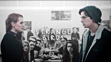 Strange birds; Cheryl & Jughead