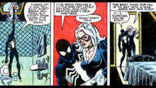 Black Cat brings the injured Spiderman home