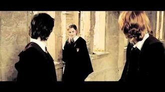 Say Something Harry+Hermione (THC)
