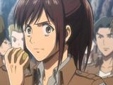 Sasha x Potato-kun