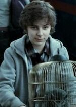 James Sirius Potter