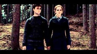 All I Want Harry & Hermione