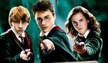 Harry Potter (Fandom)