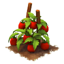 File:Sw tomatoes last.png