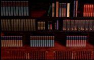 LibraryBookshelfWereMostBooksAreFound