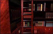 LibraryLadderInIntitalPosition