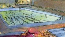 Area1 pool